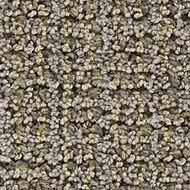 Carpet - Advantage Carpet and Flooring Outlet - Chatsworth, CA